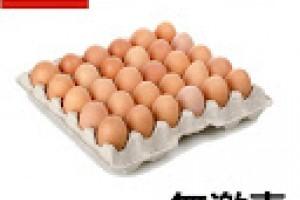 無激素雞蛋的好處